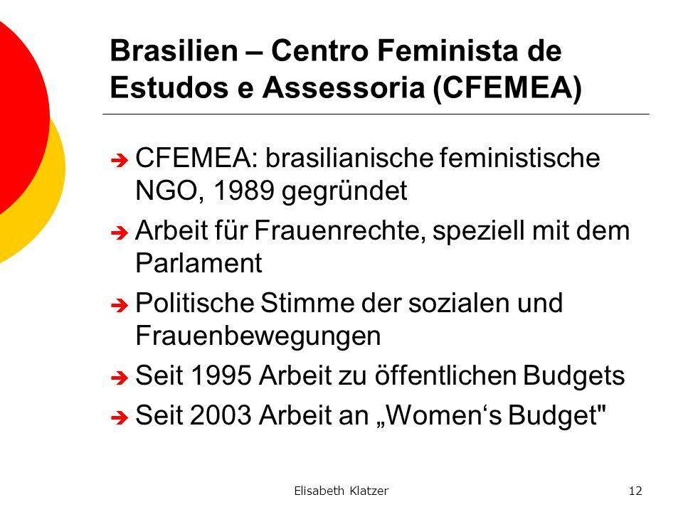 Elisabeth Klatzer12 Brasilien – Centro Feminista de Estudos e Assessoria (CFEMEA) CFEMEA: brasilianische feministische NGO, 1989 gegründet Arbeit für