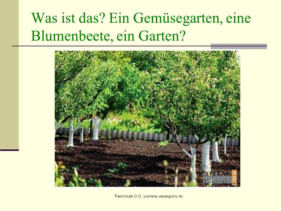Was ist das? Ein Gemüsegarten, eine Blumenbeete, ein Garten? Ракитская О.О. учитель немецкого яз