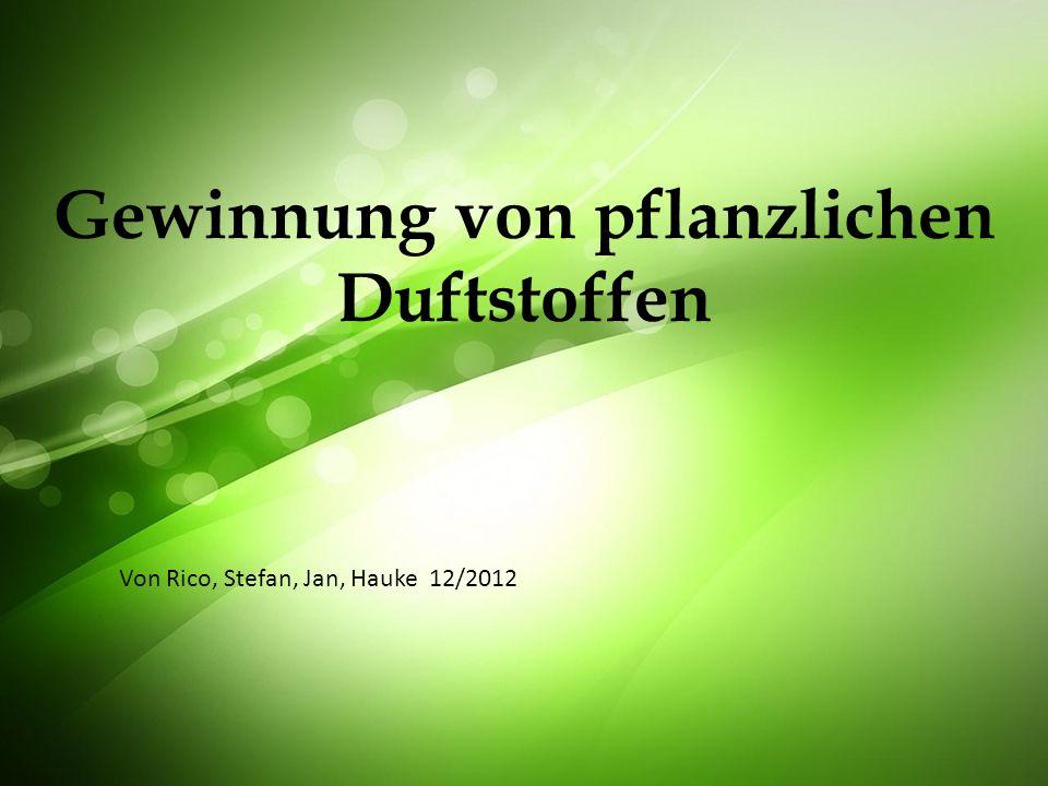 Gewinnung von pflanzlichen Duftstoffen Von Rico, Stefan, Jan, Hauke 12/2012