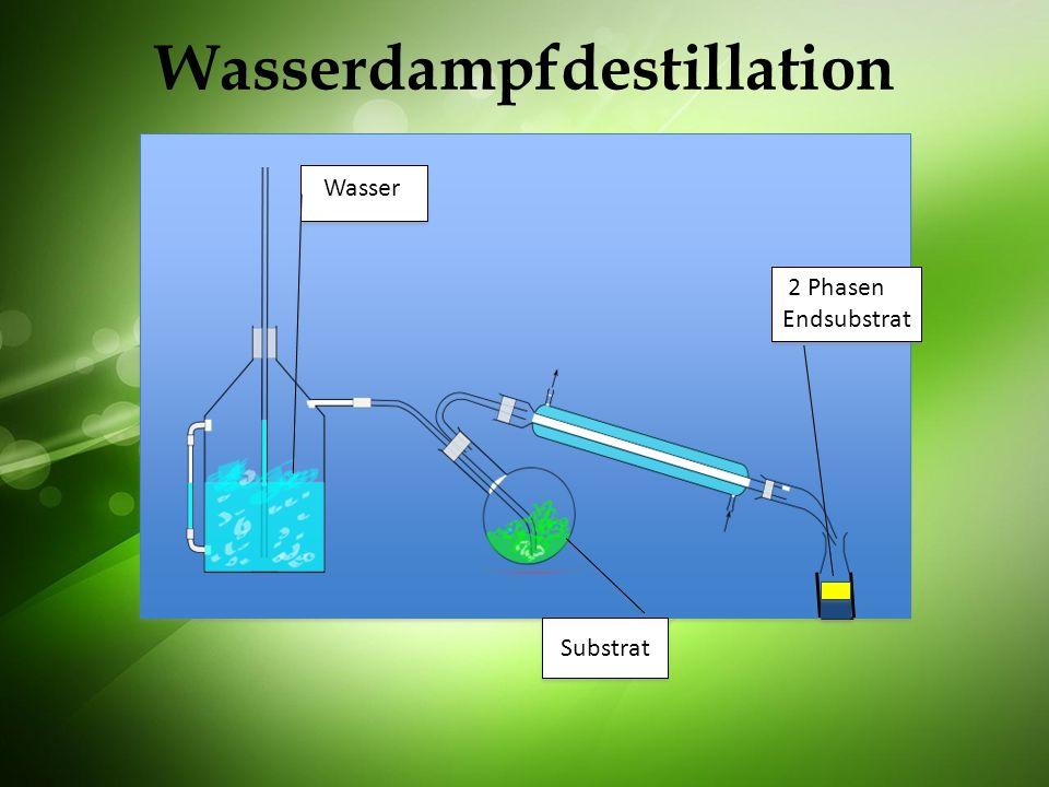 Wasserdampfdestillation Substrat Wasser 2 Phasen Endsubstrat