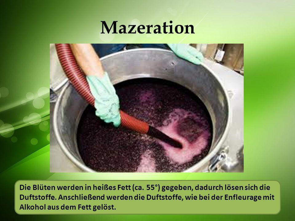 Mazeration Die Blüten werden in heißes Fett (ca. 55°) gegeben, dadurch lösen sich die Duftstoffe. Anschließend werden die Duftstoffe, wie bei der Enfl