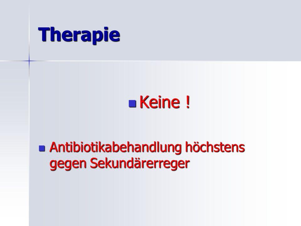 Therapie Keine .Keine .