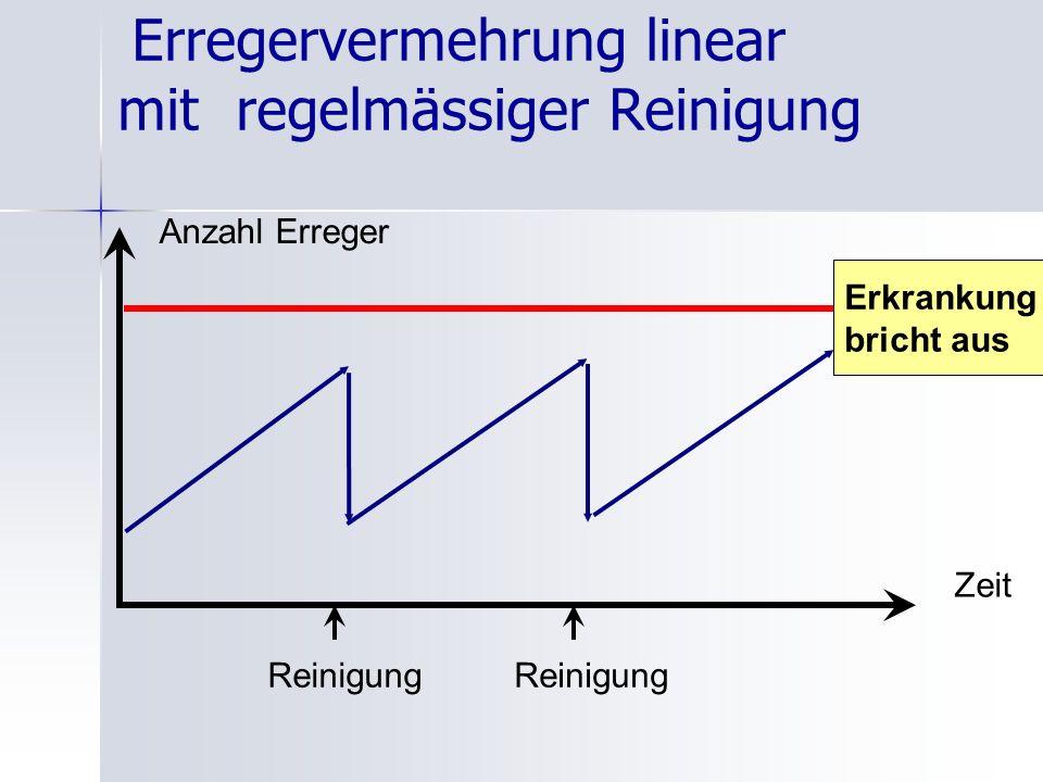 Erregervermehrung linear mit regelmässiger Reinigung Anzahl Erreger Zeit Erkrankung bricht aus Reinigung