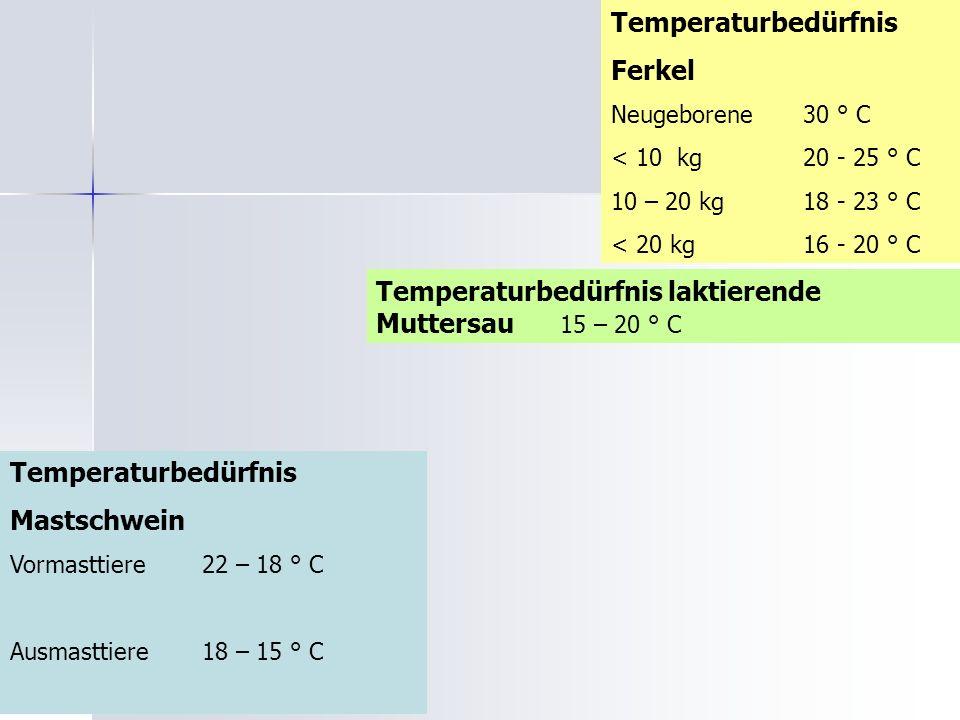 Temperaturbedürfnis Ferkel Neugeborene 30 ° C < 10 kg 20 - 25 ° C 10 – 20 kg 18 - 23 ° C < 20 kg 16 - 20 ° C Temperaturbedürfnis Mastschwein Vormasttiere22 – 18 ° C Ausmasttiere18 – 15 ° C Temperaturbedürfnis laktierende Muttersau 15 – 20 ° C
