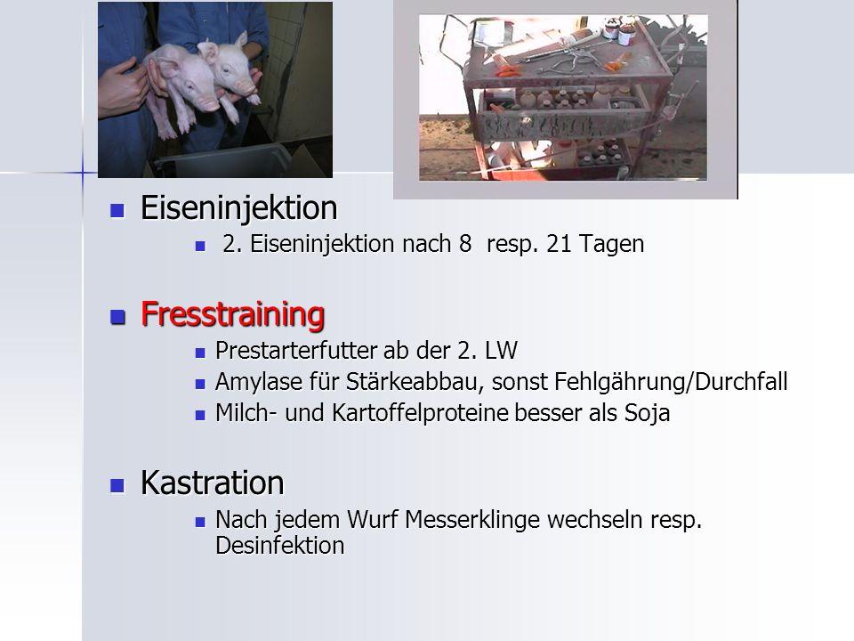 Eiseninjektion Eiseninjektion 2.Eiseninjektion nach 8 resp.