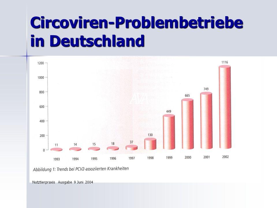 Geschichte der Circoviren Circoviren 1974 entdeckt ( kleinstes Virus) Circoviren 1974 entdeckt ( kleinstes Virus) 85 % der Schlachtschweine in ND hatten Antikörper 85 % der Schlachtschweine in ND hatten Antikörper Infektionsversuche bei 9 Mt.