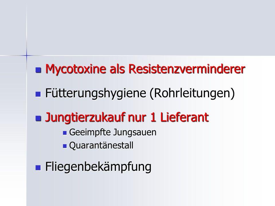 Mycotoxine als Resistenzverminderer Mycotoxine als Resistenzverminderer Fütterungshygiene (Rohrleitungen) Fütterungshygiene (Rohrleitungen) Jungtierzukauf nur 1 Lieferant Jungtierzukauf nur 1 Lieferant Geeimpfte Jungsauen Geeimpfte Jungsauen Quarantänestall Quarantänestall Fliegenbekämpfung Fliegenbekämpfung