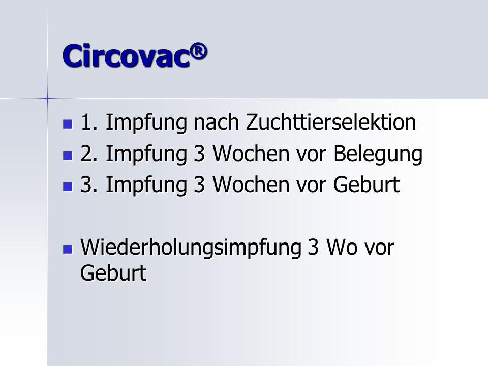 Circovac ® 1.Impfung nach Zuchttierselektion 1. Impfung nach Zuchttierselektion 2.