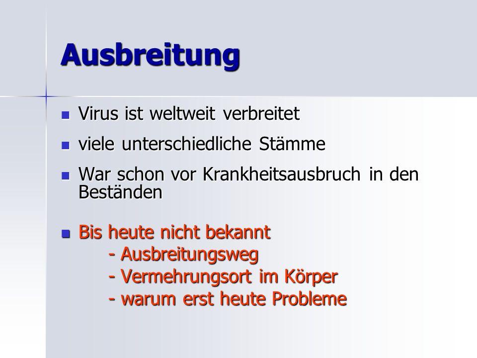 Infektionsversuche