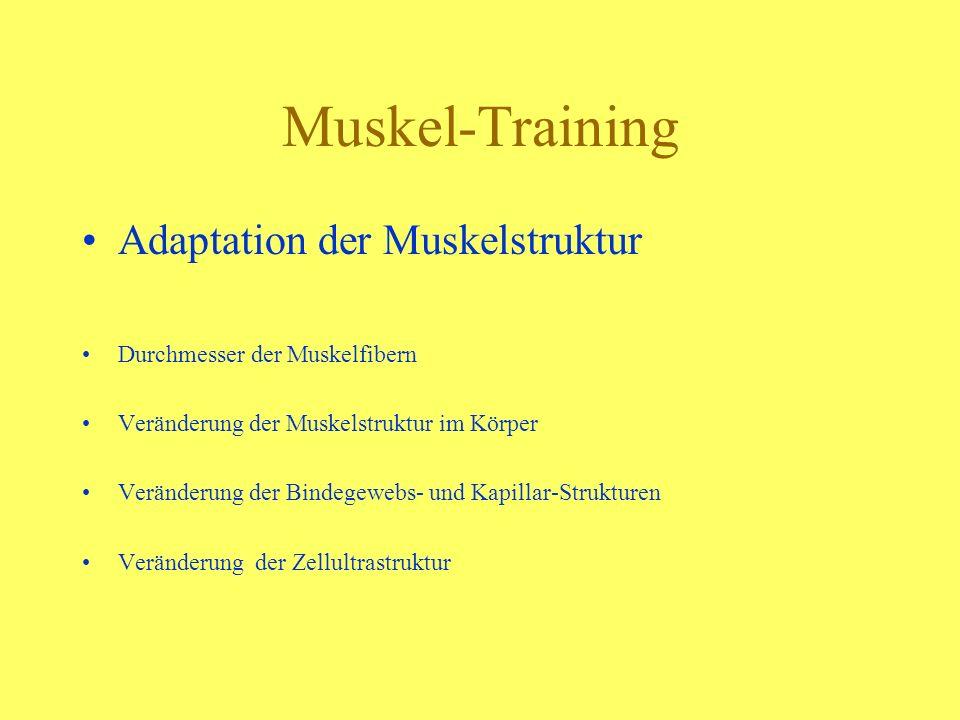 Muskel-Training Adaptation der Muskelstruktur Durchmesser der Muskelfibern Veränderung der Muskelstruktur im Körper Veränderung der Bindegewebs- und K