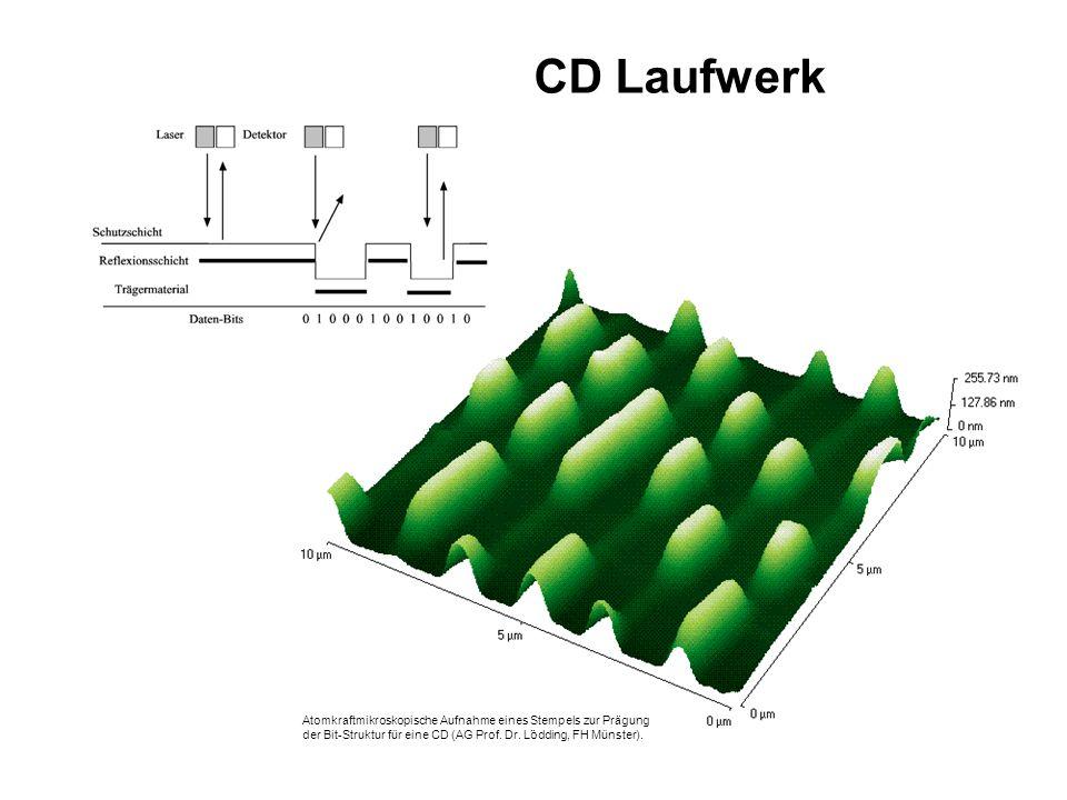 Atomkraftmikroskopische Aufnahme eines Stempels zur Prägung der Bit-Struktur für eine CD (AG Prof.