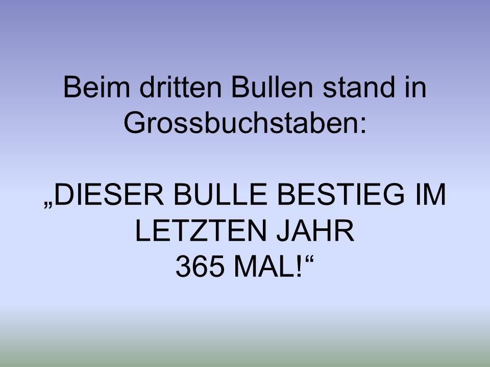 Beim dritten Bullen stand in Grossbuchstaben: DIESER BULLE BESTIEG IM LETZTEN JAHR 365 MAL!