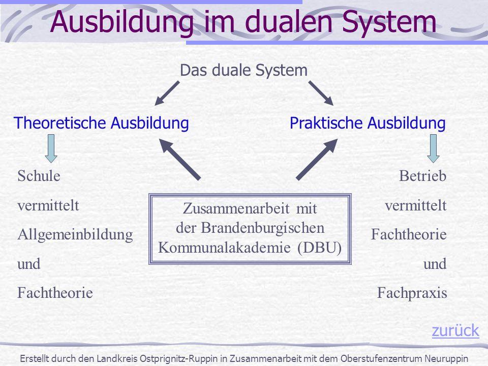 Erstellt durch den Landkreis Ostprignitz-Ruppin in Zusammenarbeit mit dem Oberstufenzentrum Neuruppin zurück Ausbildung im dualen System Das duale Sys