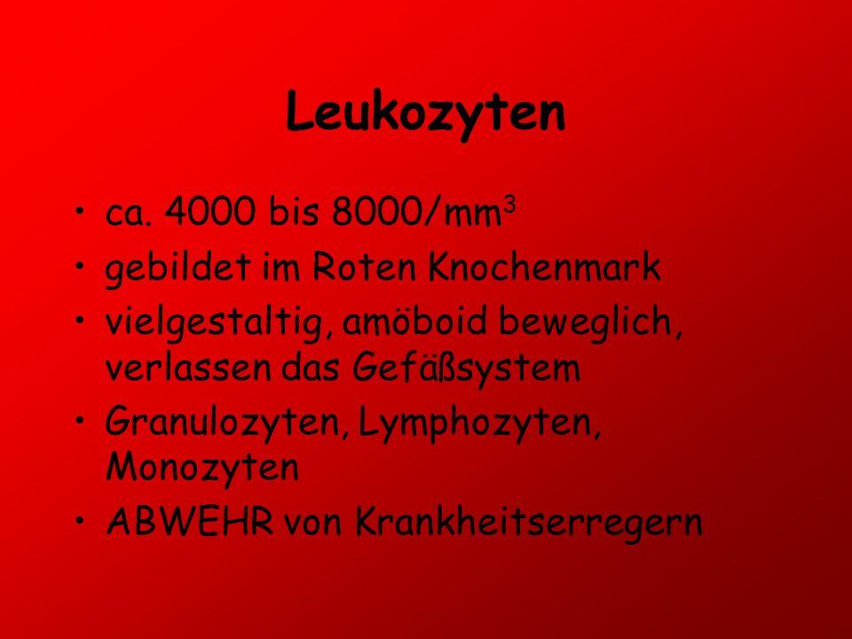 Leukozyten ca. 4000 bis 8000/mm 3 gebildet im Roten Knochenmark vielgestaltig, amöboid beweglich, verlassen das Gefäßsystem Granulozyten, Lymphozyten,