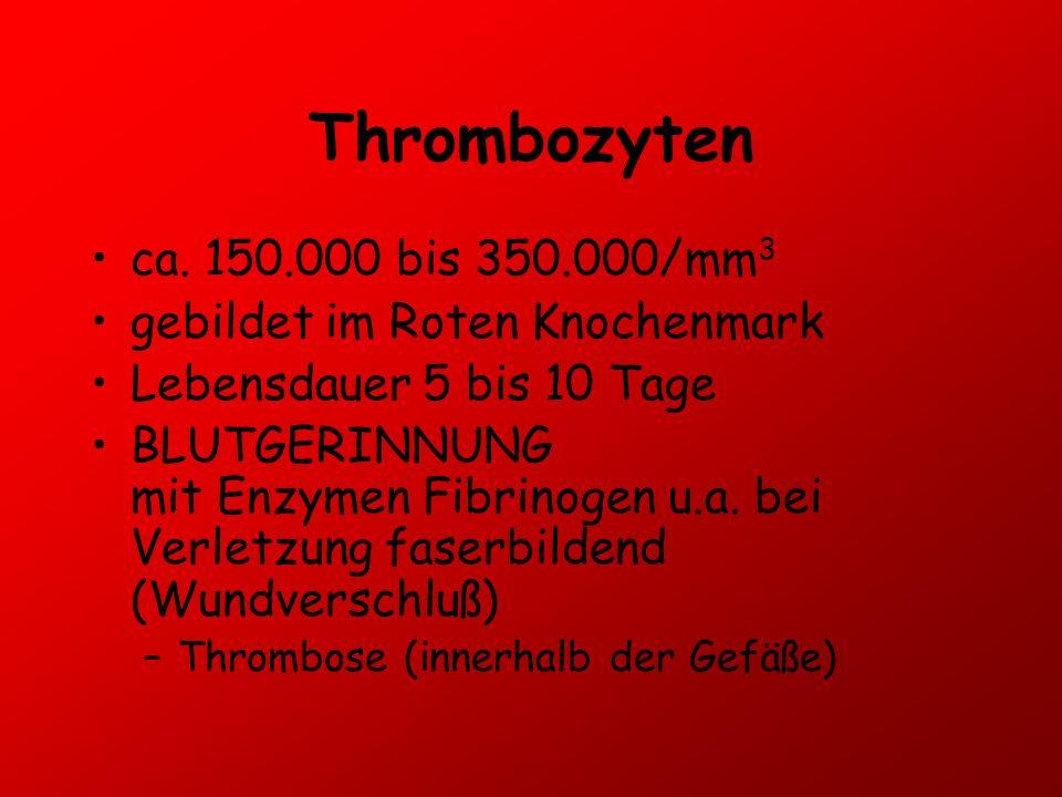 Thrombozyten ca. 150.000 bis 350.000/mm 3 gebildet im Roten Knochenmark Lebensdauer 5 bis 10 Tage BLUTGERINNUNG mit Enzymen Fibrinogen u.a. bei Verlet