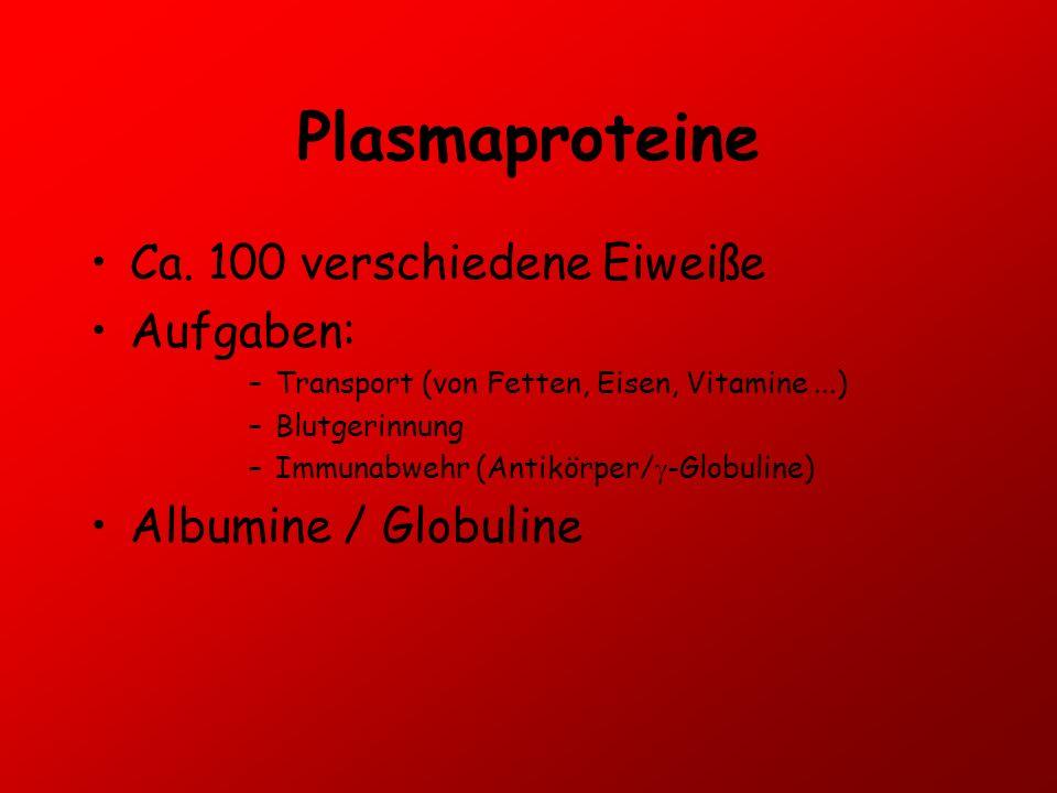 Plasmaproteine Ca. 100 verschiedene Eiweiße Aufgaben: –Transport (von Fetten, Eisen, Vitamine...) –Blutgerinnung –Immunabwehr (Antikörper/ -Globuline)