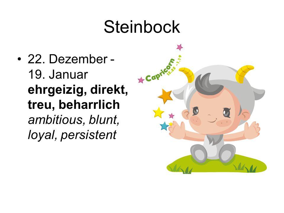 Steinbock 22. Dezember - 19.