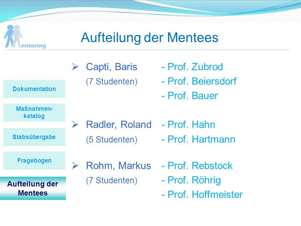 Aufteilung der Mentees Maßnahmen- katalog Stabsübergabe Dokumentation Fragebogen Aufteilung der Mentees Capti, Baris - Prof. Zubrod (7 Studenten) - Pr