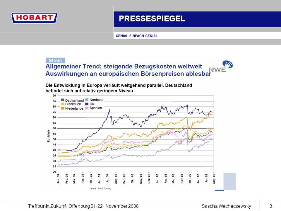 Treffpunkt Zukunft, Offenburg 21-22- November 2008Sascha Wachaczewsky3 PRESSESPIEGEL