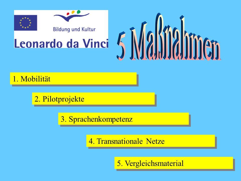 1. Mobilität 2. Pilotprojekte 3. Sprachenkompetenz 4. Transnationale Netze 5. Vergleichsmaterial