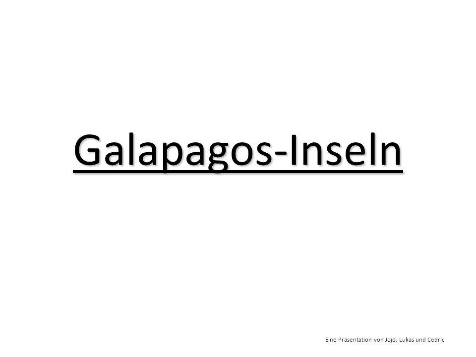 Galapagos-Inseln Eine Präsentation von Jojo, Lukas und Cedric