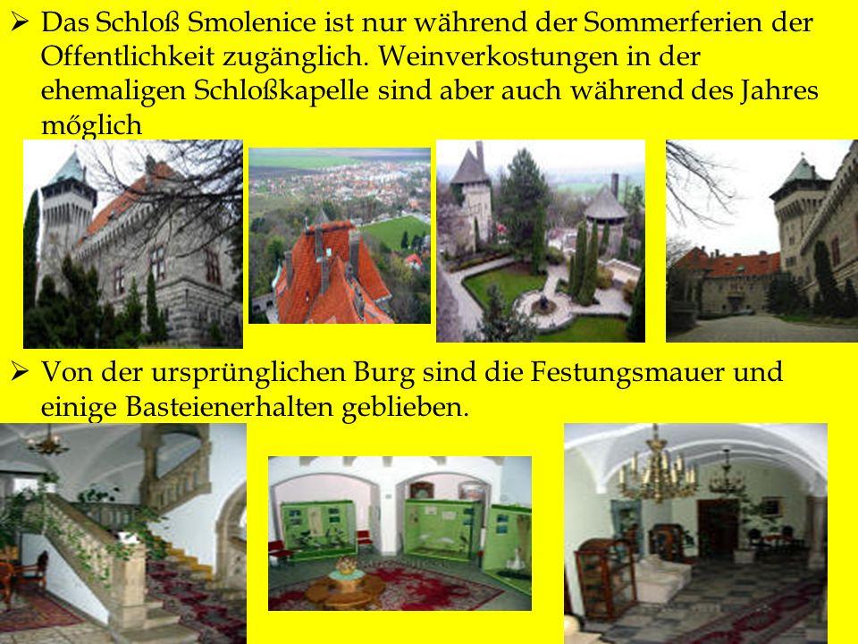 Das Schloß Smolenice ist nur während der Sommerferien der Offentlichkeit zugänglich. Weinverkostungen in der ehemaligen Schloßkapelle sind aber auch w
