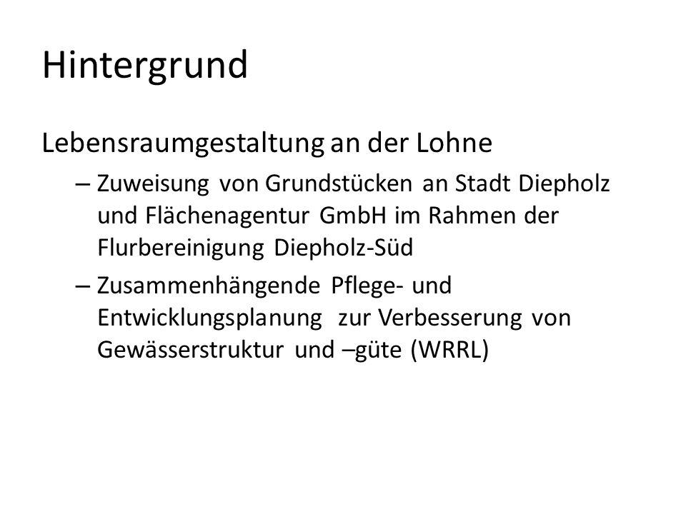 Hintergrund Lebensraumgestaltung an der Lohne – Zuweisung von Grundstücken an Stadt Diepholz und Flächenagentur GmbH im Rahmen der Flurbereinigung Die