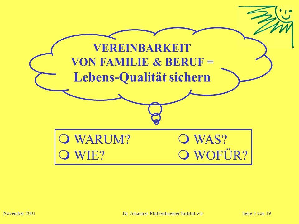 VEREINBARKEIT VON FAMILIE & BERUF = Lebens-Qualität sichern WARUM? WAS? WIE? WOFÜR? November 2001 Dr. Johannes Pfaffenhuemer/Institut wirSeite 3 von 1