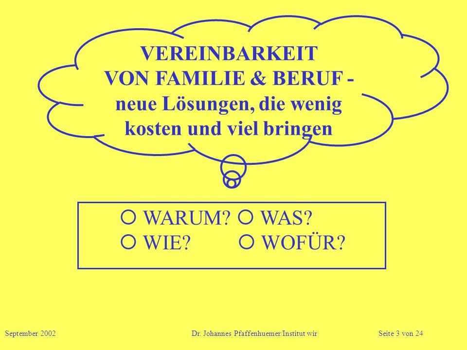 VEREINBARKEIT VON FAMILIE & BERUF - neue Lösungen, die wenig kosten und viel bringen September 2002 Dr. Johannes Pfaffenhuemer/Institut wirSeite 3 von
