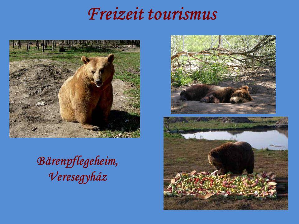 Freizeit tourismus Bärenpflegeheim, Veresegyház