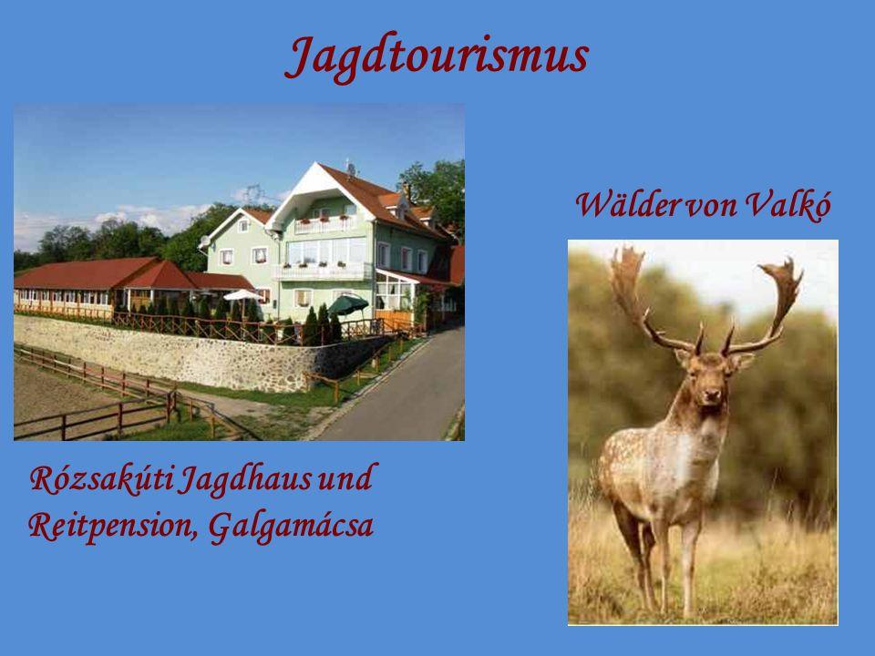 Jagdtourismus Rózsakúti Jagdhaus und Reitpension, Galgamácsa Wälder von Valkó