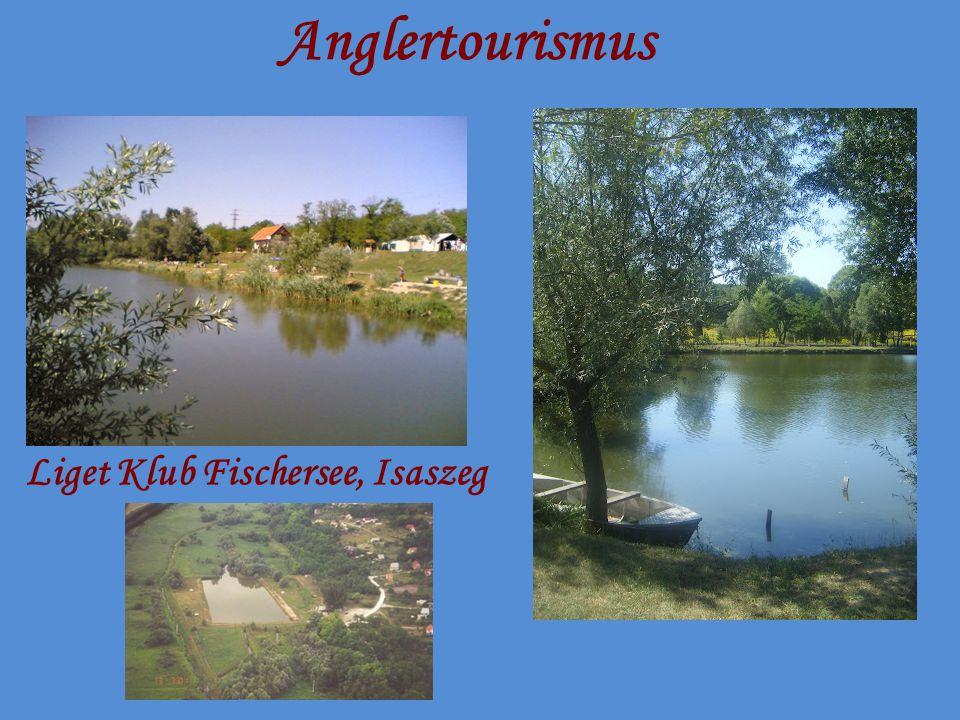 Anglertourismus Liget Klub Fischersee, Isaszeg