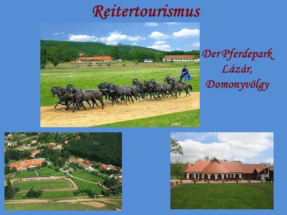 Reitertourismus Der Pferdepark Lázár, Domonyvölgy