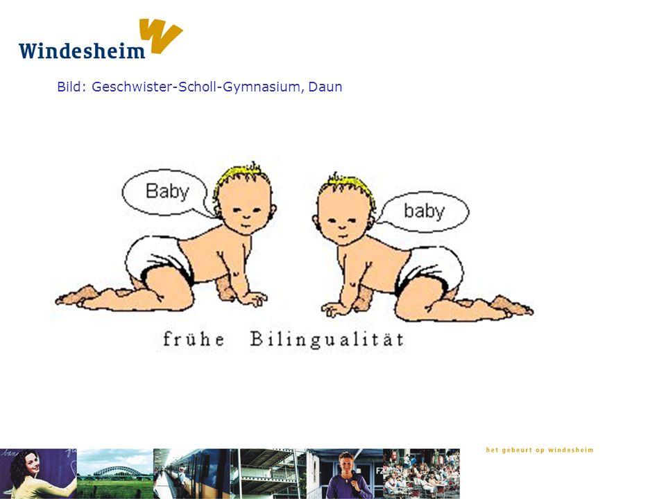 Bild: Geschwister-Scholl-Gymnasium, Daun