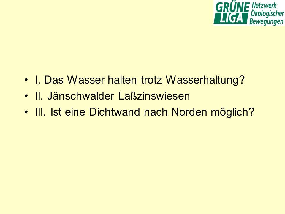I. Das Wasser halten trotz Wasserhaltung? II. Jänschwalder Laßzinswiesen III. Ist eine Dichtwand nach Norden möglich?