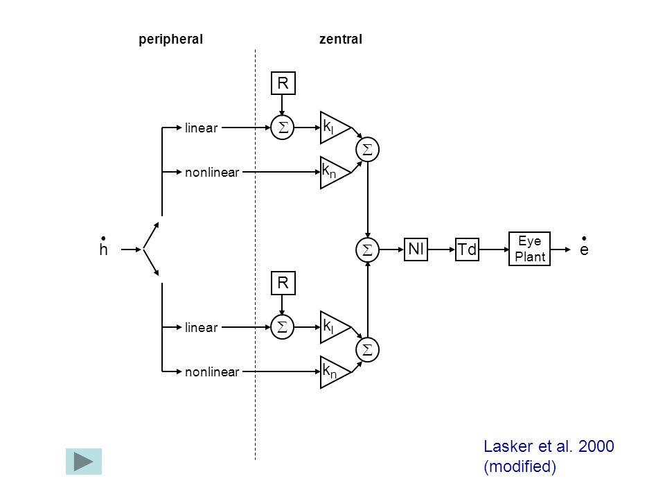h linear nonlinear linear nonlinear klkl knkn R e klkl knkn R NI Td Eye Plant peripheralzentral Lasker et al. 2000 (modified)