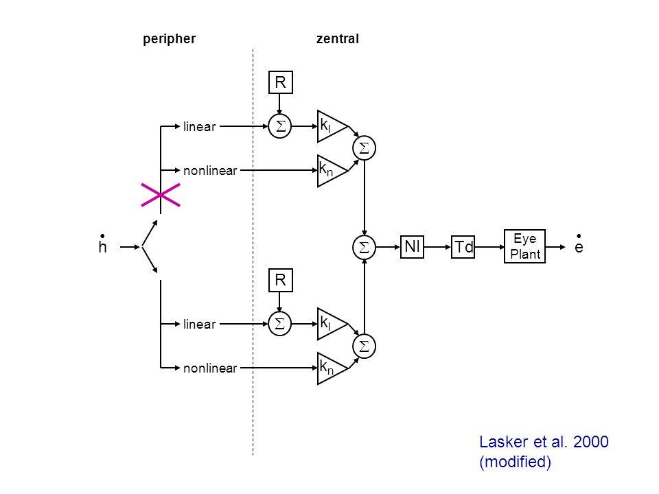 h linear nonlinear linear nonlinear klkl knkn R e klkl knkn R NI Td Eye Plant peripherzentral Lasker et al. 2000 (modified)