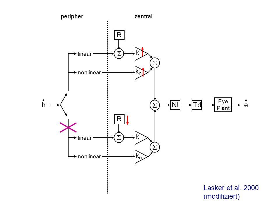 h linear nonlinear linear nonlinear klkl knkn R e klkl knkn R NI Td Eye Plant peripherzentral Lasker et al. 2000 (modifiziert)