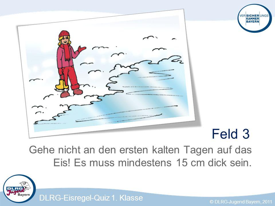 DLRG-Eisregel-Quiz 1.