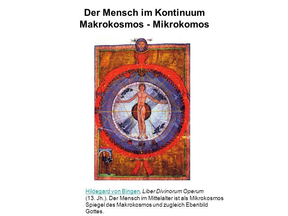 Der Mensch im Kontinuum Makrokosmos - Mikrokomos Hildegard von BingenHildegard von Bingen, Liber Divinorum Operum (13.