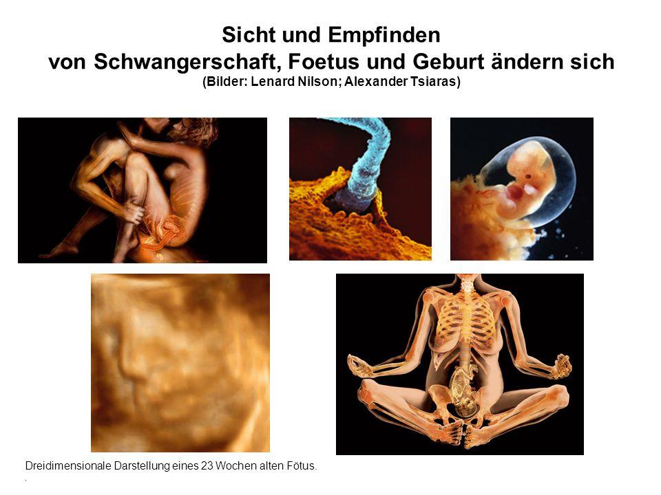 Sicht und Empfinden von Schwangerschaft, Foetus und Geburt ändern sich (Bilder: Lenard Nilson; Alexander Tsiaras) Dreidimensionale Darstellung eines 23 Wochen alten Fötus..