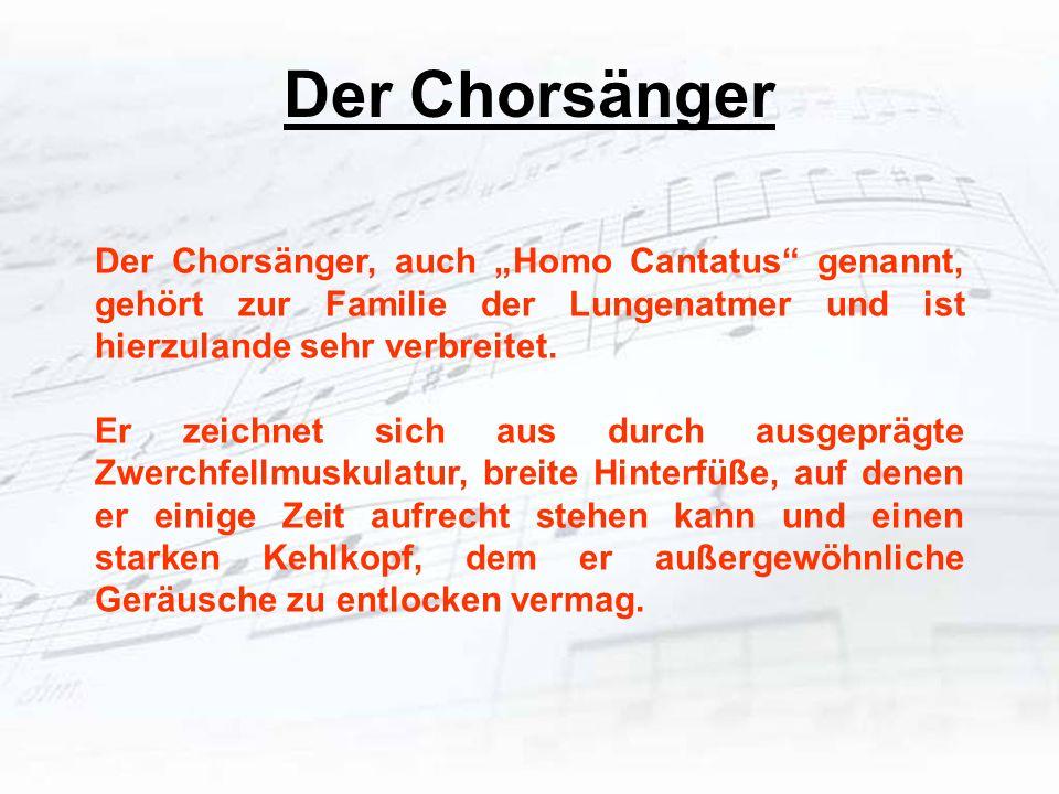 Der Chorsänger Der Chorsänger, auch Homo Cantatus genannt, gehört zur Familie der Lungenatmer und ist hierzulande sehr verbreitet. Er zeichnet sich au