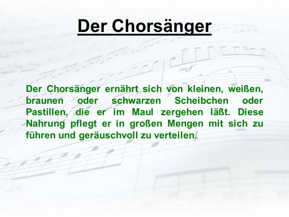 Der Chorsänger Der Chorsänger ernährt sich von kleinen, weißen, braunen oder schwarzen Scheibchen oder Pastillen, die er im Maul zergehen läßt. Diese