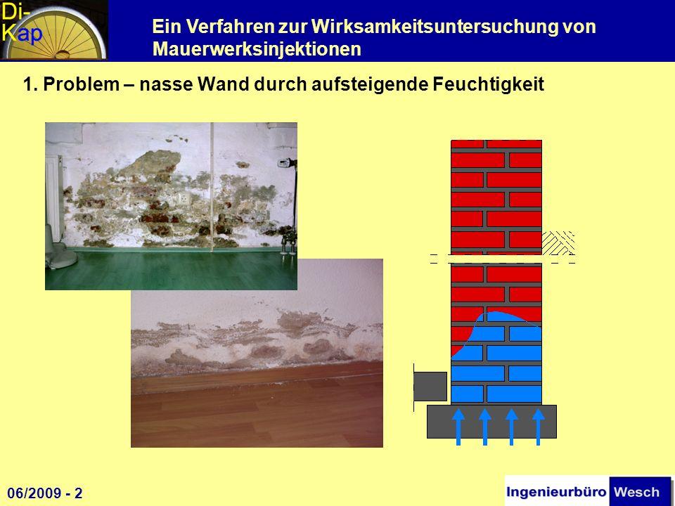 Ein Verfahren zur Wirksamkeitsuntersuchung von Mauerwerksinjektionen 1. Problem – nasse Wand durch aufsteigende Feuchtigkeit 1 06/2009 - 2