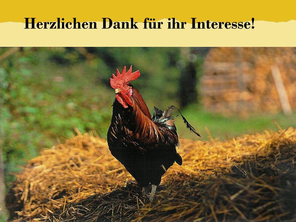 Herzlichen Dank für ihr Interesse! © ELKB – Bernd Brinkmann