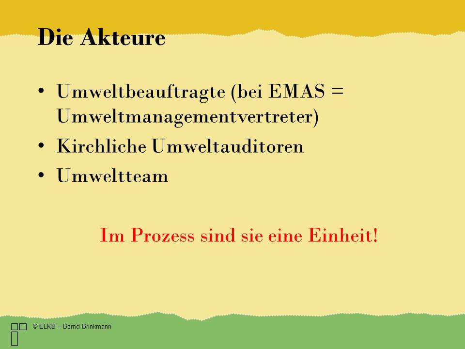 Die Akteure Umweltbeauftragte (bei EMAS = Umweltmanagementvertreter) Kirchliche Umweltauditoren Umweltteam Im Prozess sind sie eine Einheit.