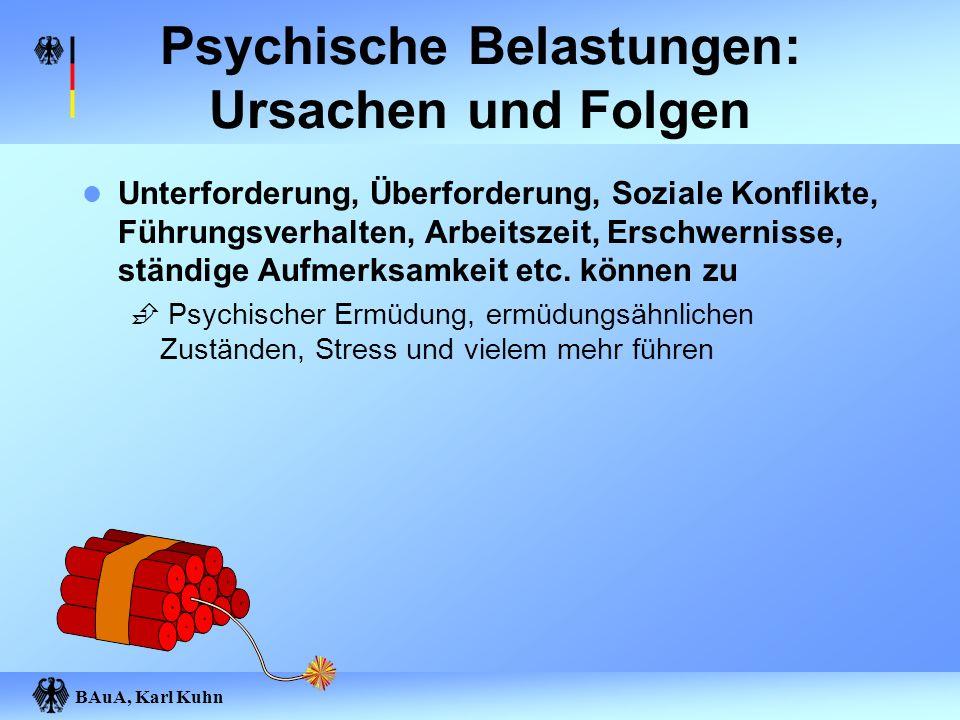 BAuA, Karl Kuhn Psychische Belastungen: Ursachen und Folgen Unterforderung, Überforderung, Soziale Konflikte, Führungsverhalten, Arbeitszeit, Erschwer