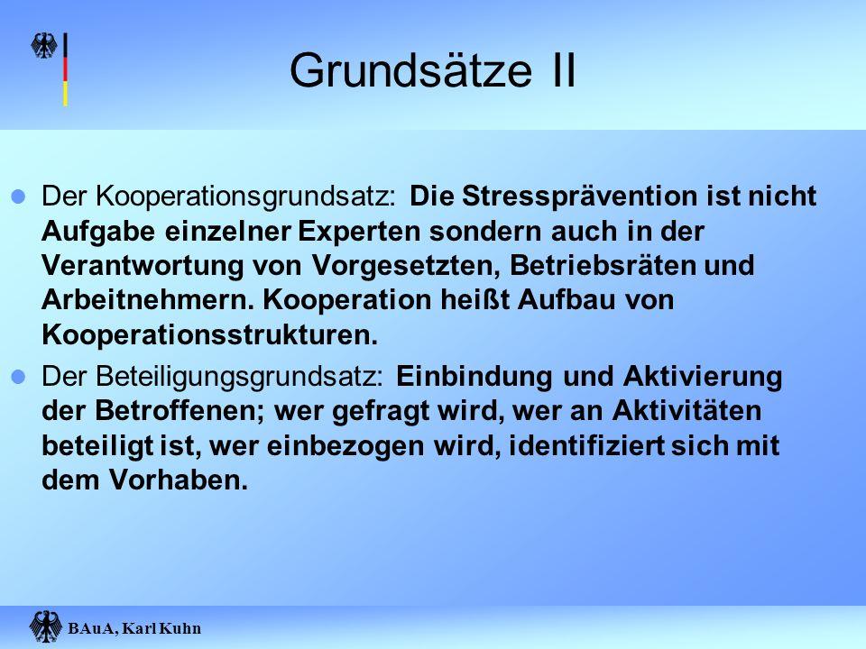 BAuA, Karl Kuhn Grundsätze II Der Kooperationsgrundsatz: Die Stressprävention ist nicht Aufgabe einzelner Experten sondern auch in der Verantwortung v