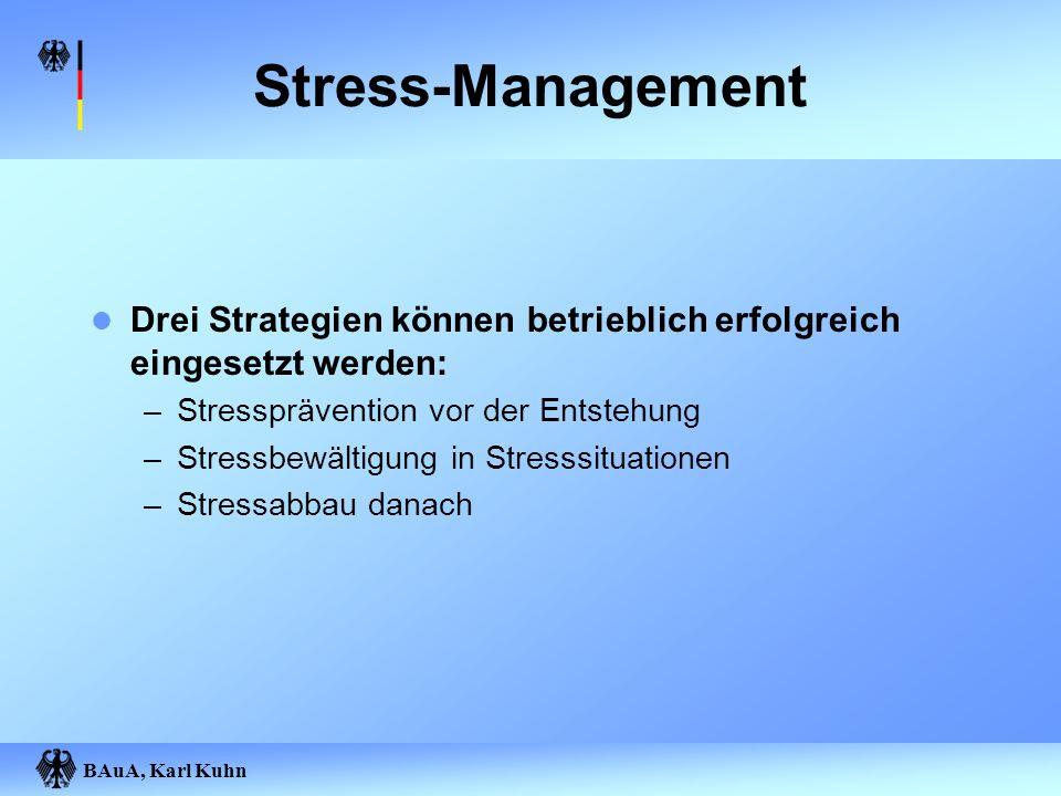 BAuA, Karl Kuhn Stress-Management Drei Strategien können betrieblich erfolgreich eingesetzt werden: –Stressprävention vor der Entstehung –Stressbewält
