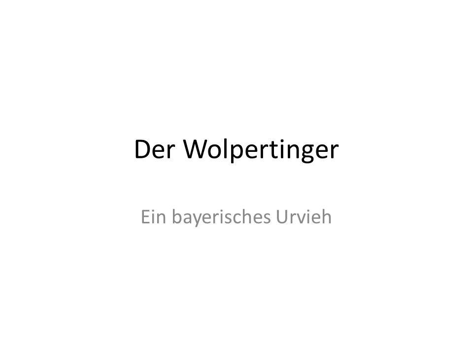 Der Wolpertinger Ein bayerisches Urvieh